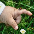 Les savanturiers avec Fleur Daugey