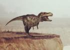 Les dinosaures sans fard