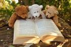 Raconte doudou : Le livre qui dort