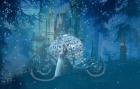 La planète des contes
