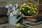 Tutos jardinage