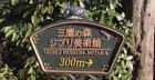 Musée Ghibli