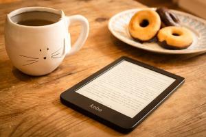 - Qu'est-ce qu'un livre numérique et une liseuse ?