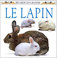Lapin (Le)