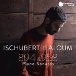 Sonata, D.894, sol majeur