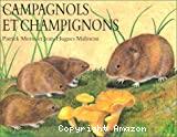 Campagnols et champignons