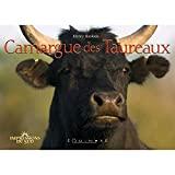 Camargue des taureaux