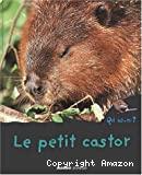 Petit castor (Le)